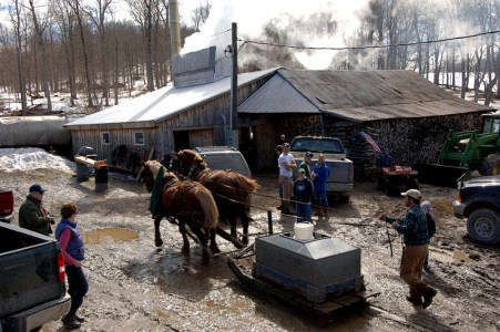 Howrigan Family Farm maple sugaring in Fairfield, VT.