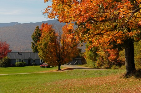 Fall scenery Fayston, Vermont.