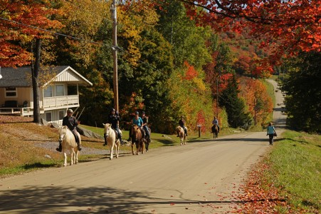 Fall scenery and horseback riding Fayston, Vermont.