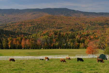 Fall scenery Waitsfield, Vermont.