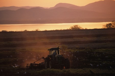 Springtime farmer raking his field at sunset in Charlotte, Vermont with Lake Champlain and the Adirondack Mountains of New York in background.