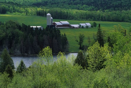 Spring scenic of a farm in Cabot, Vermont.