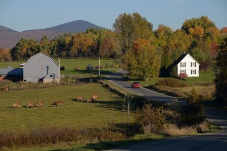 Farm Barton, Vermont.